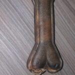 Pferdehautknochen  1 St.