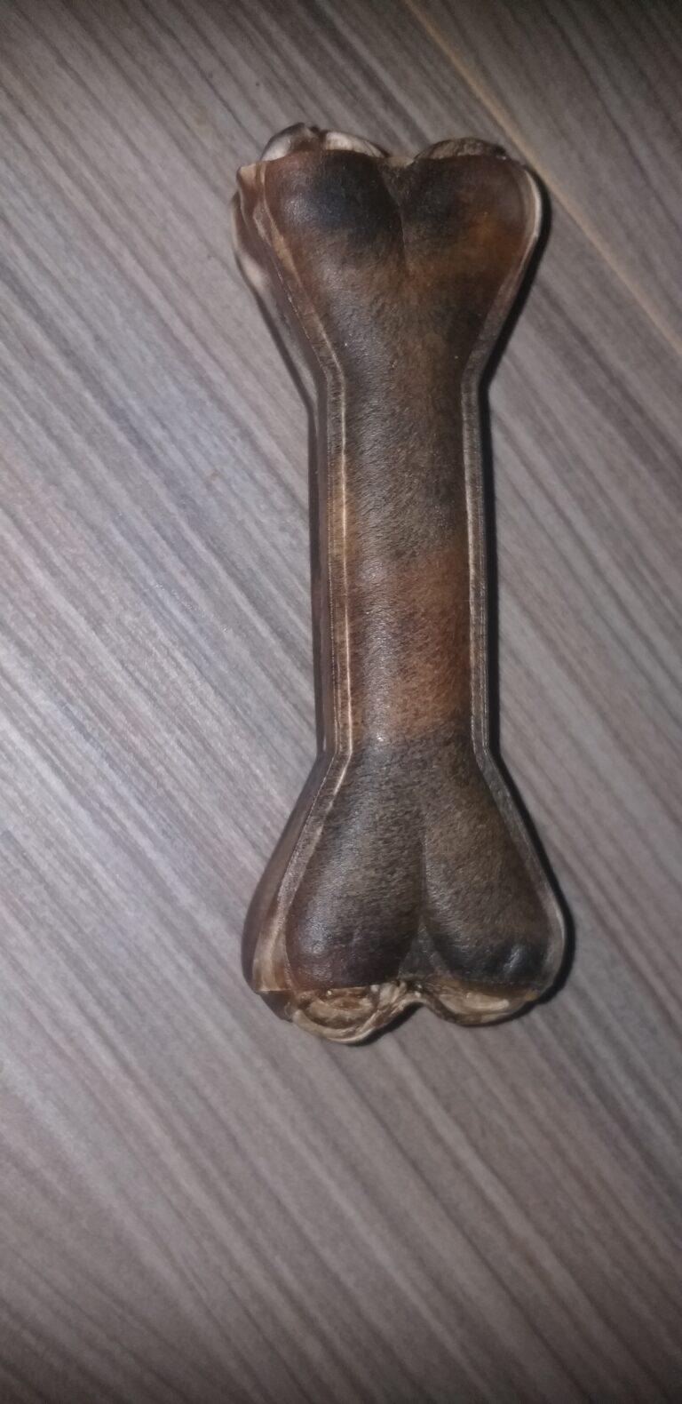 Pferdehautknochen