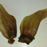 1 St. Rinderohr mit Muschel