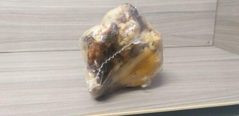 manutknochen (3)