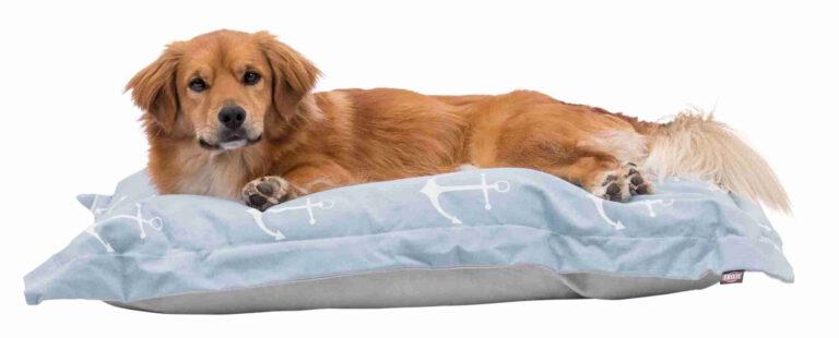 Hundekissen mit  Ankermotive